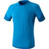Dynafit Vertical - T-shirt course à pied Homme - bleu